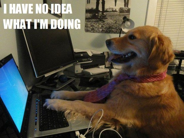 Writing Update – I Am This Dog | Just kidding…